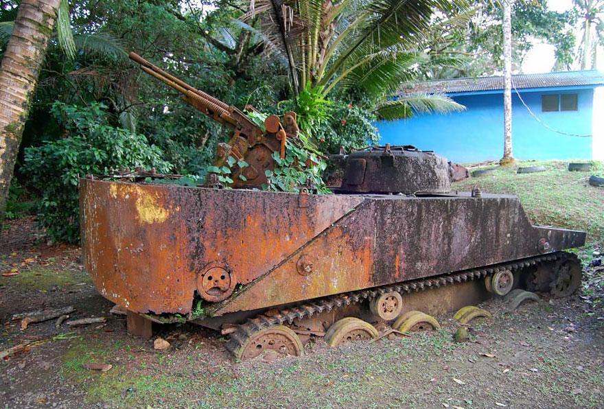 16-tank-nature