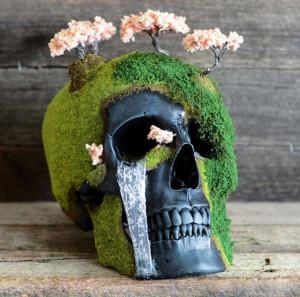 Skulls-1
