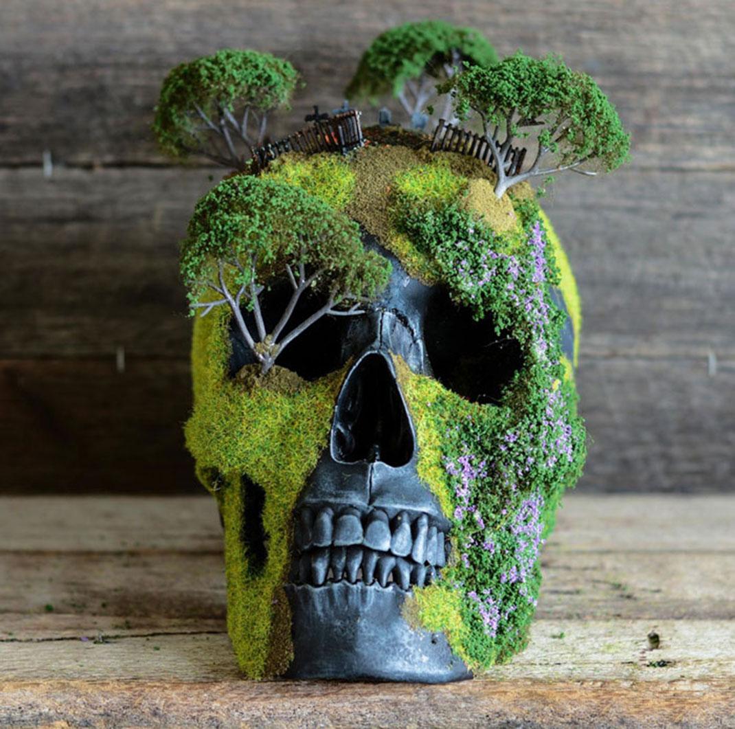 Skulls-7