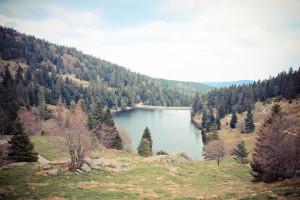 Vosges-4