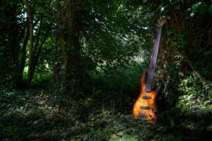 guitare-feuilles