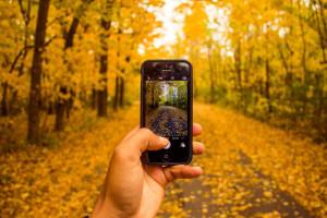 photo-smartphone-automne