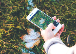 photo-smartphone-feuille