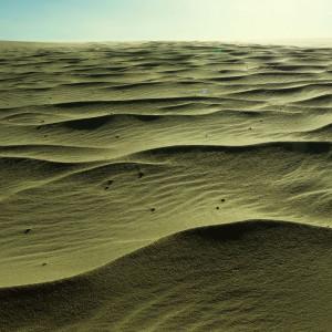 visu-dunes-bresil-10
