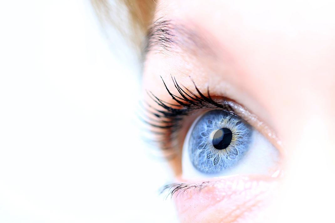 visu-oeil-bleu