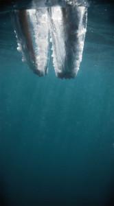 8-impact-plongeon