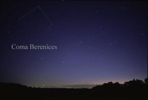 Chevelure-Bérénice