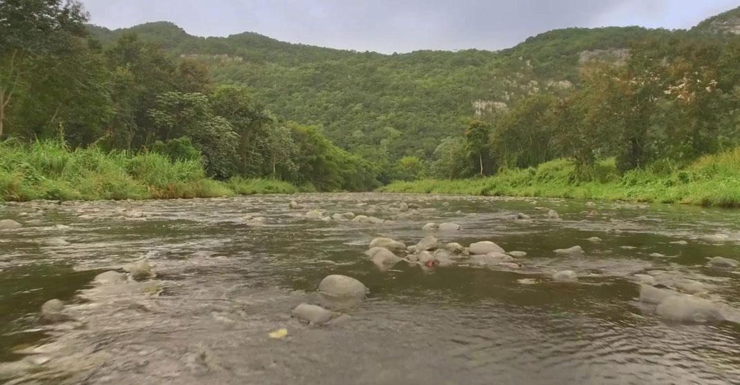 Porto-Rico-vidéo28