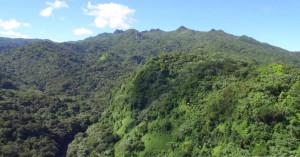 Porto-Rico-vidéo7