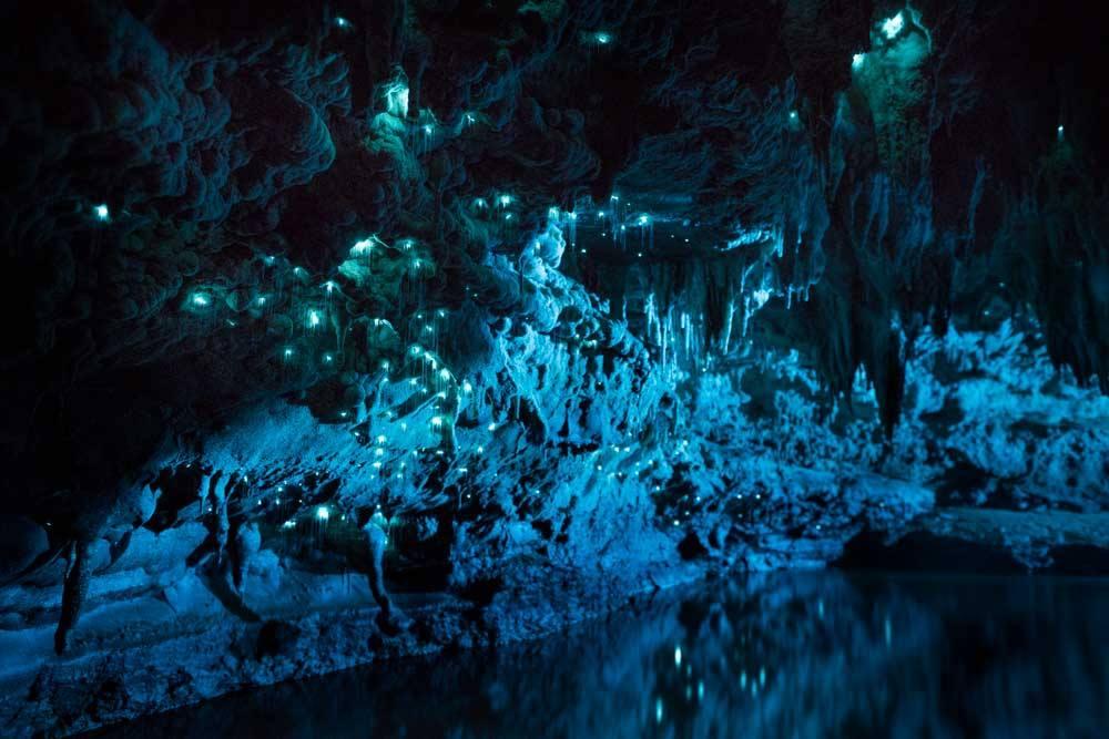 Waitomo Glowworm grotte-10