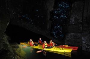 Waitomo-Glowworm-grotte-12