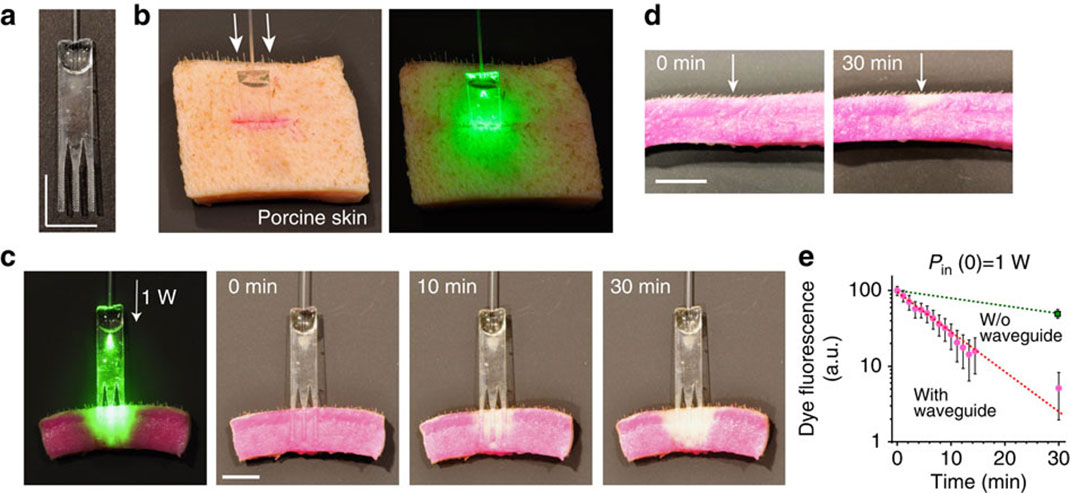 laser-vert-meneur-d'onde