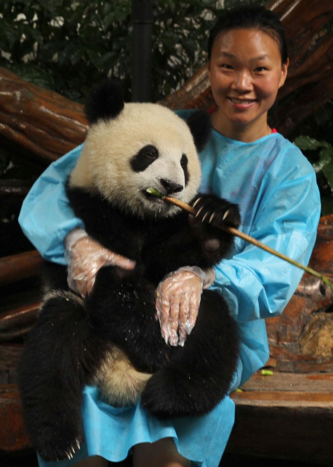 femme-panda