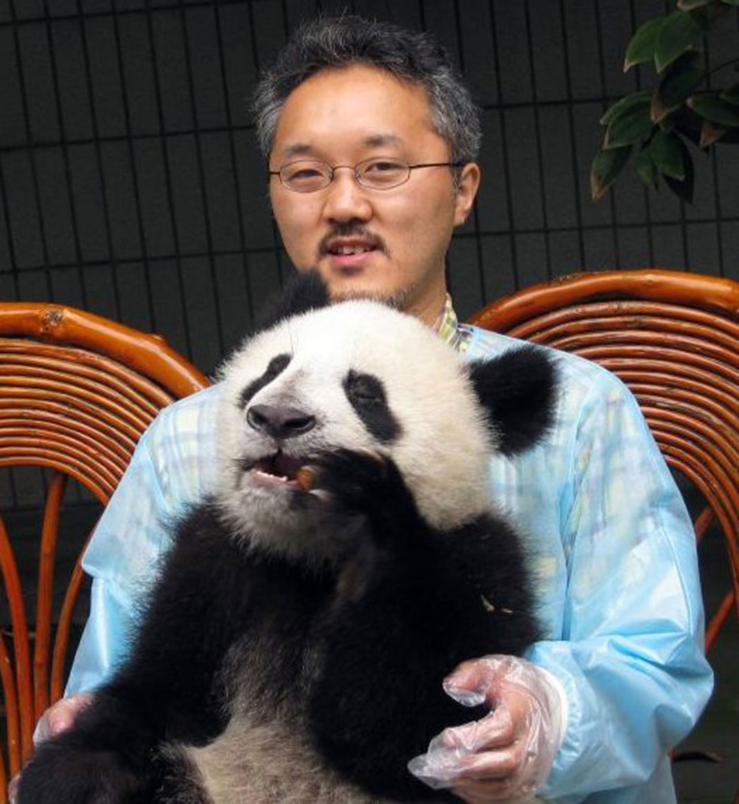 homme-panda