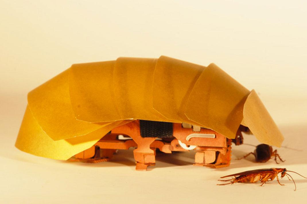 robot-cafard