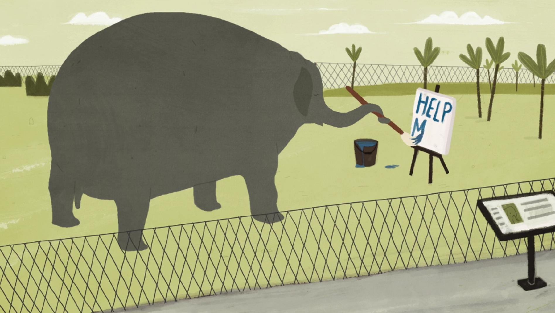 symphony-42-elephant-captivite