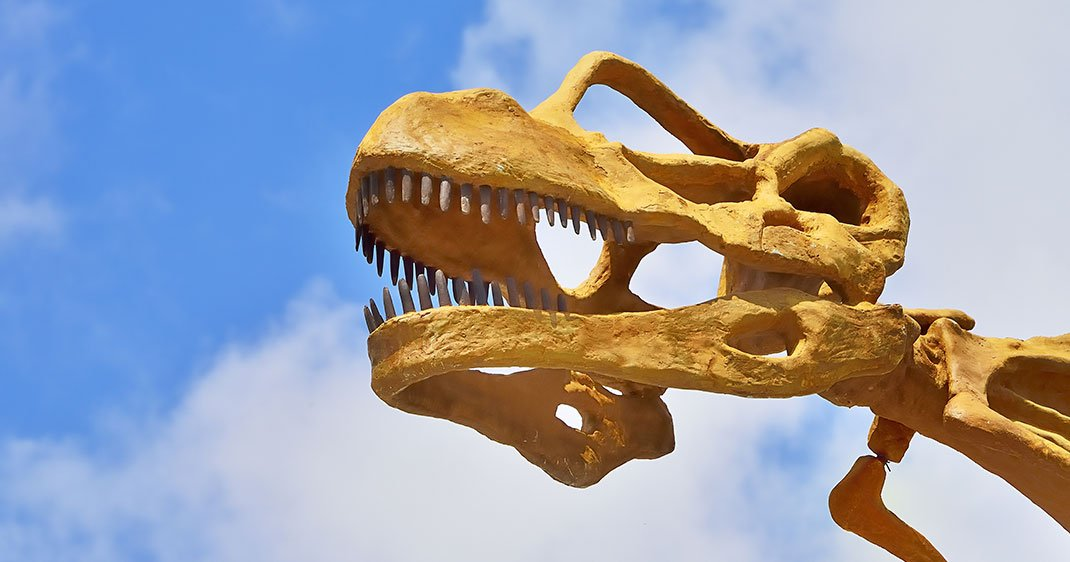 une-dinosaure