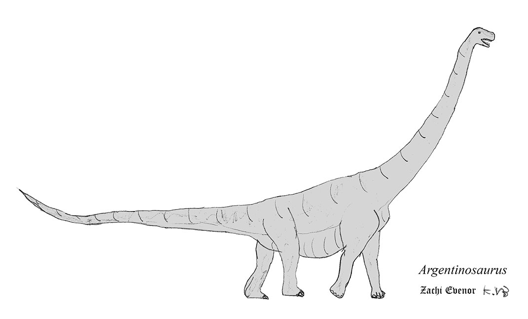 visu-argentinosaure