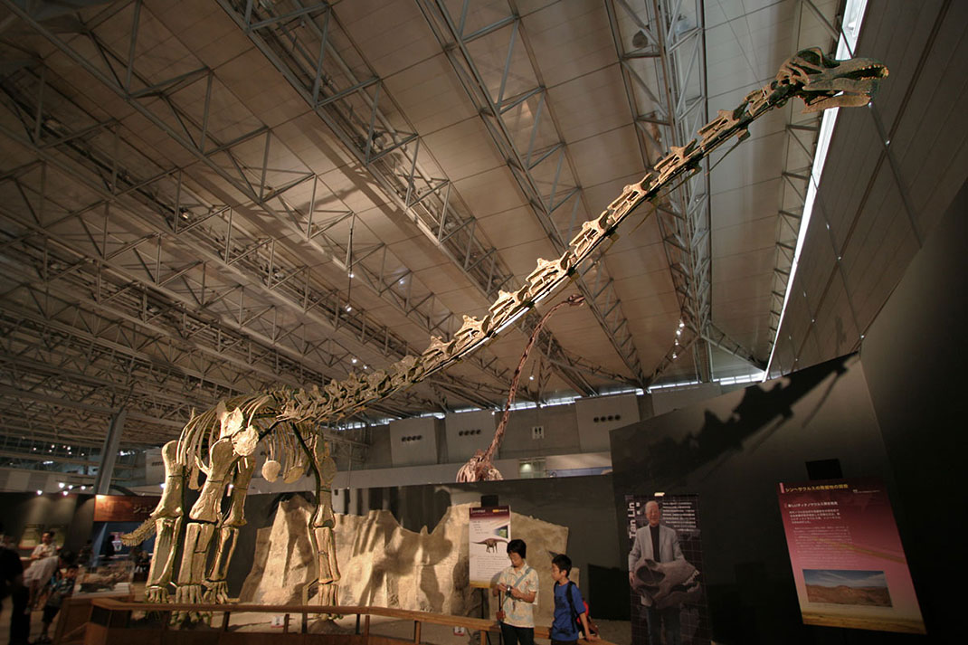 visu-titanosaure-1