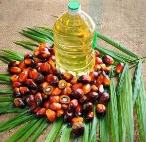 1-huile-palme