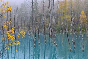 Blue-Pond-11