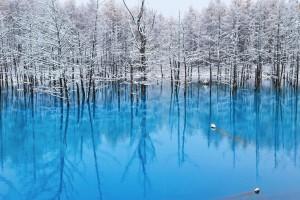 Blue-Pond-9