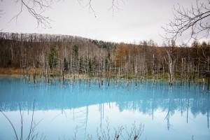 Blue-Pond-shutterstock-14