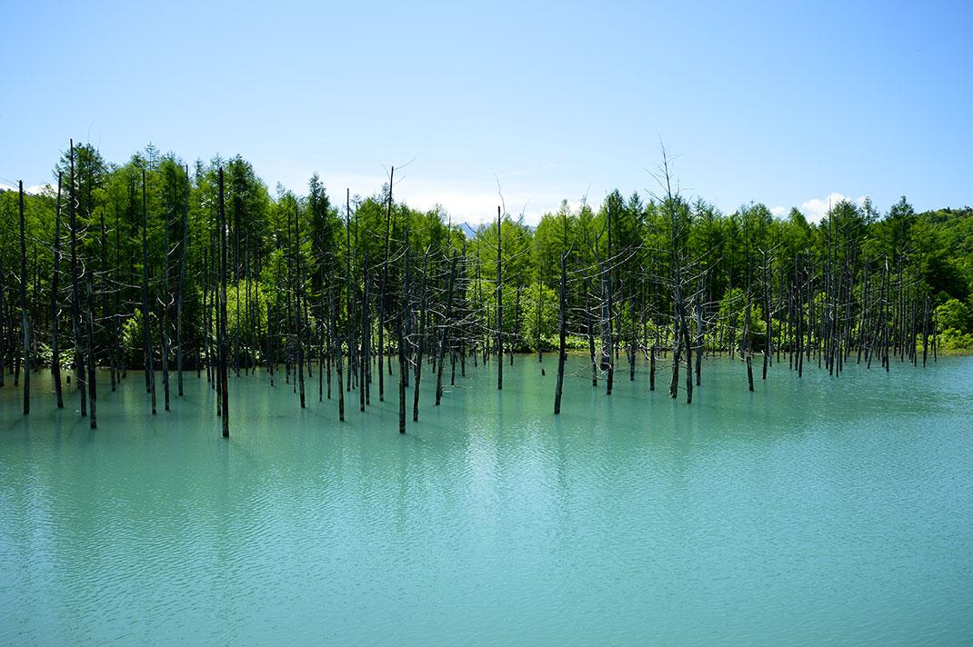 Blue-pond-3