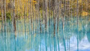 Blue-pond-5