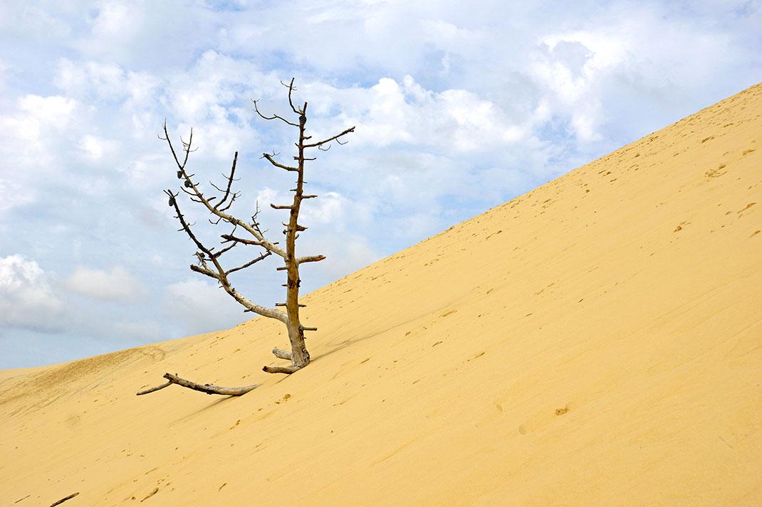 Dune-du-pilat-13
