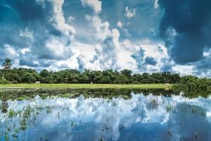 Pantanal-3