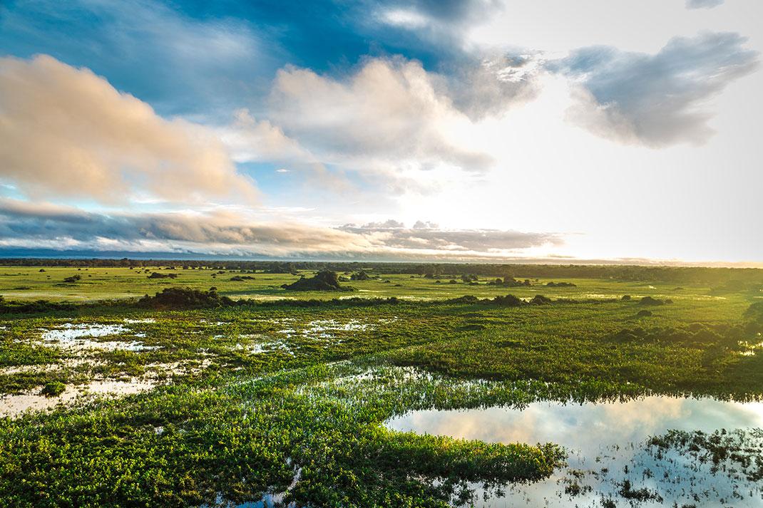 Pantanal-4
