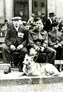animaux-decores-seconde-guerre-mondiale-4