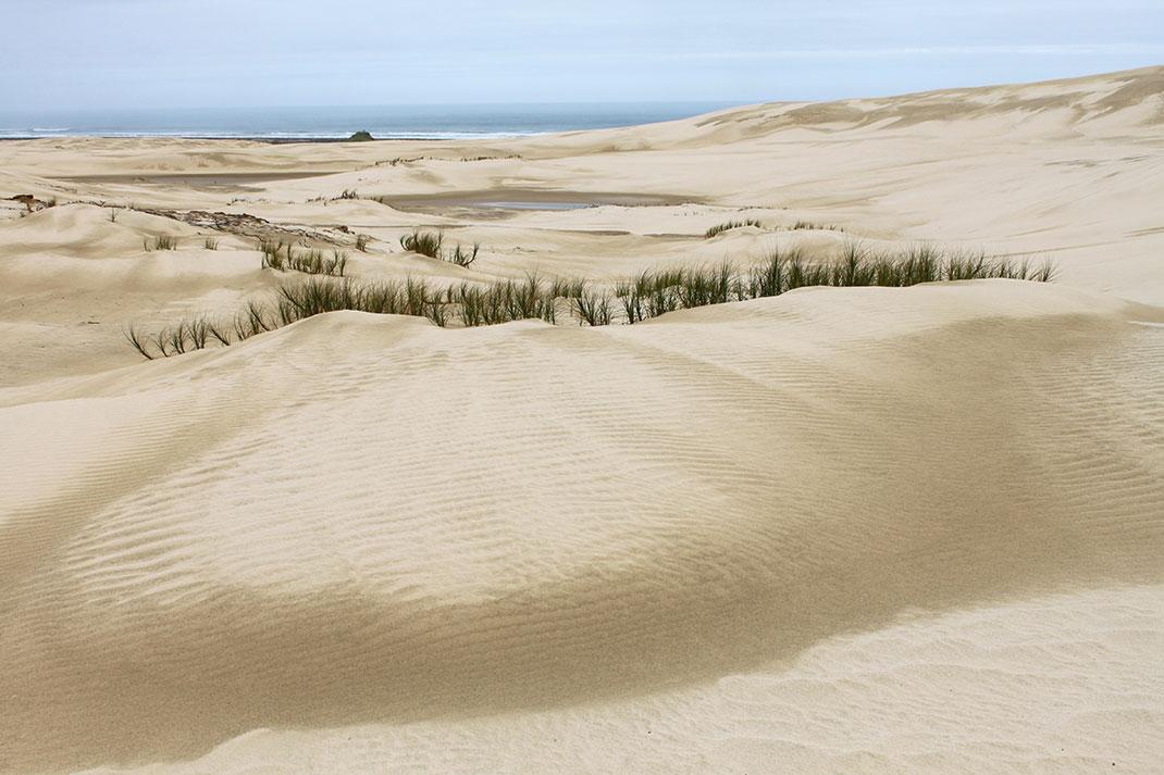 dunes-18