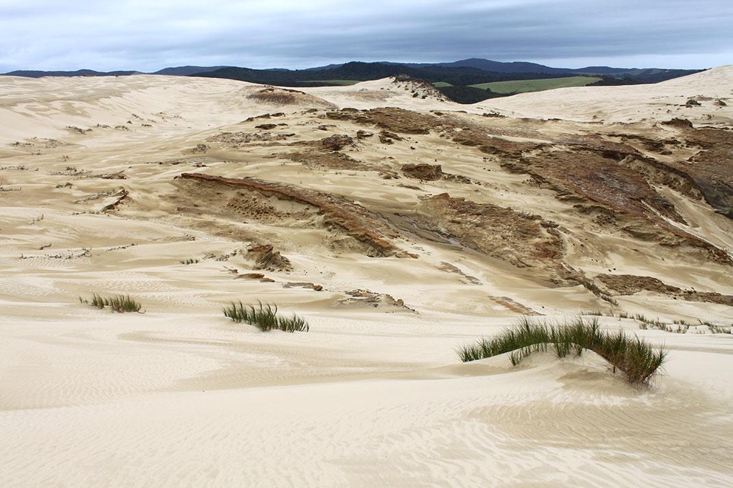 dunes-20