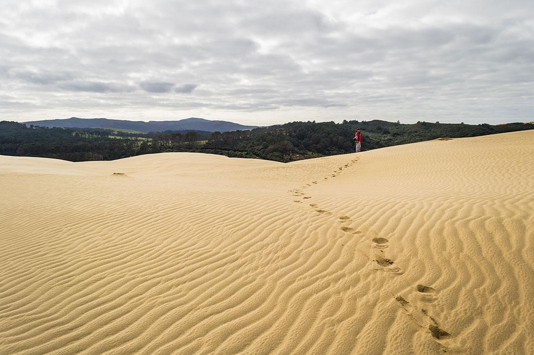 dunes-5