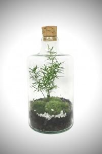 greenfactory-plantes-paris-1