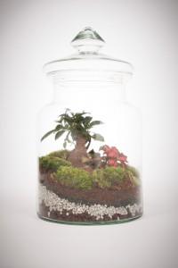 greenfactory-plantes-paris-12