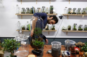 greenfactory-plantes-paris-14