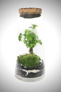 greenfactory-plantes-paris-2