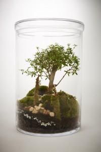 greenfactory-plantes-paris-3