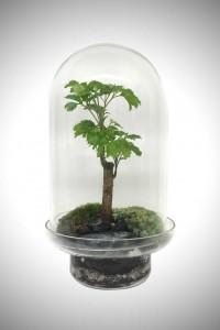 greenfactory-plantes-paris-4