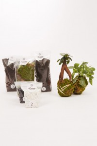 greenfactory-plantes-paris-5
