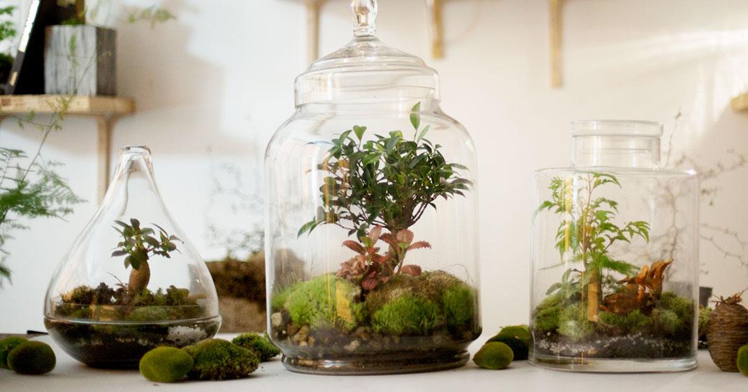 greenfactory-plantes-paris-une