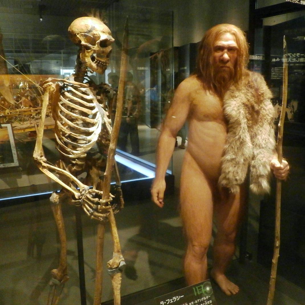 homme-neandertal-2ok