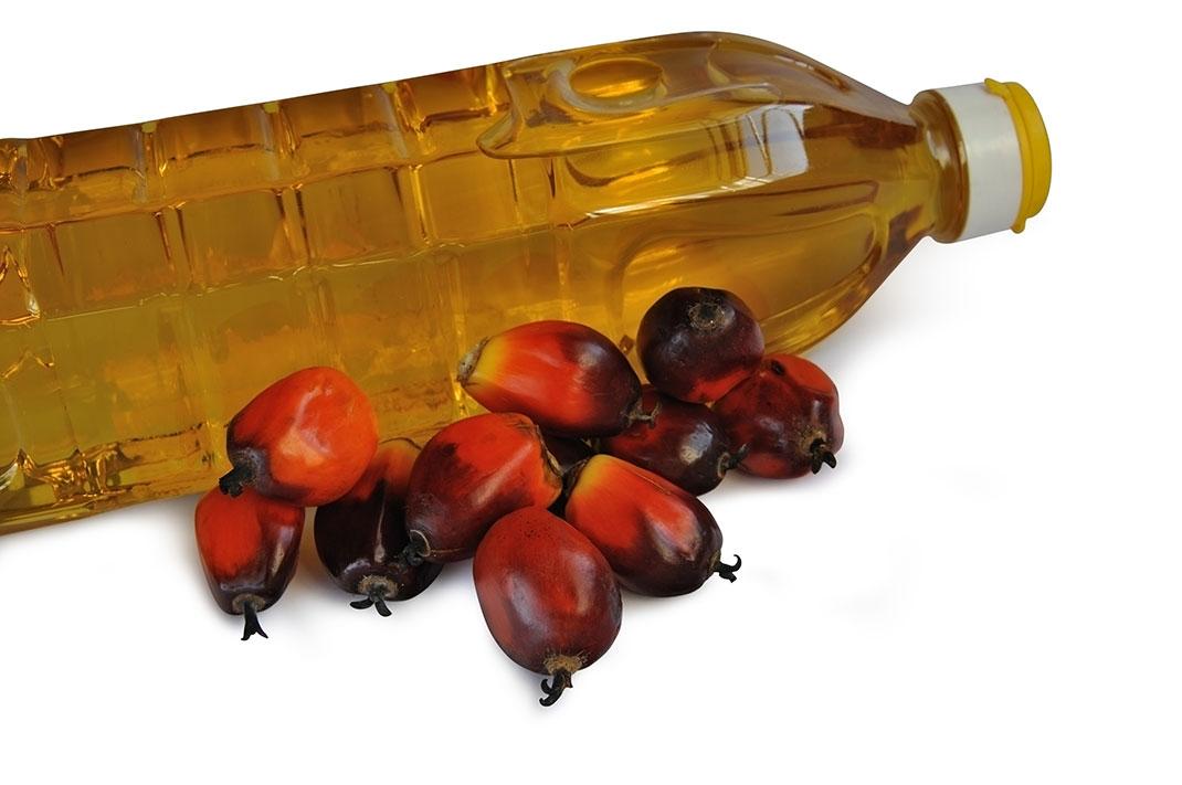 15 chiffres sur l huile de palme dont la production a des cons quences dramatiques sur la nature. Black Bedroom Furniture Sets. Home Design Ideas
