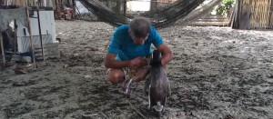 pingouin-sauveur-amitie2