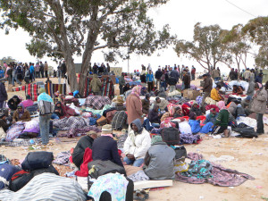 refuges-migrants-high-tech-1
