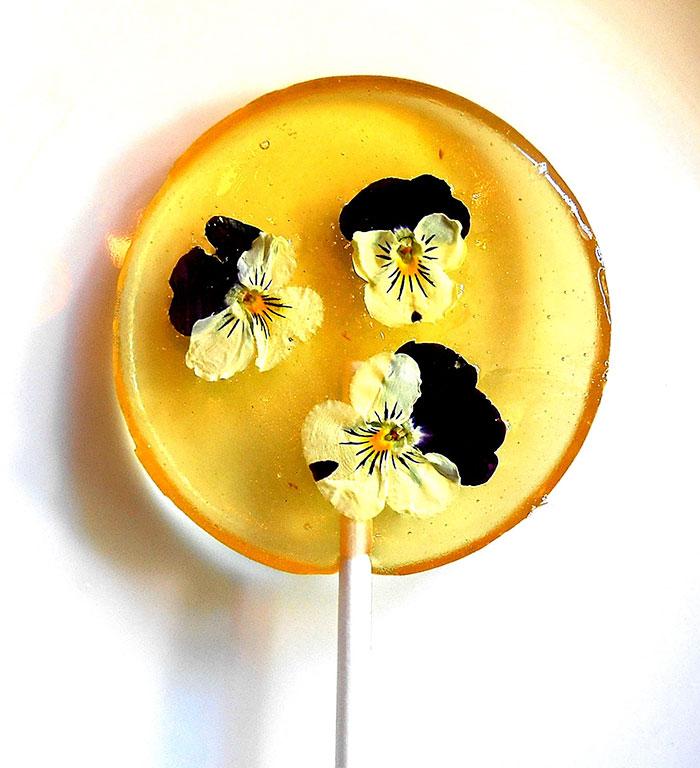 sucette-fleur-comestible-15