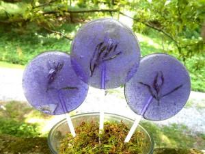 sucette-fleur-comestible-4